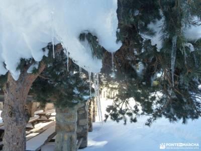 Ladera Mojonavalle-Bosques Canencia; la jarosa guadarrama viajes en octubre floracion valle del jert